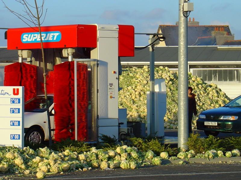 Bretonische Bauern lassen Blumenköpfe rollen