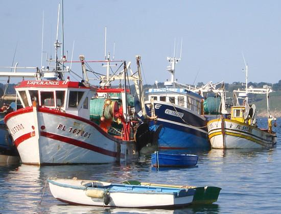 Bretagne: Fischerboote in Locquémeau